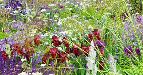 Blomsterduftende hage