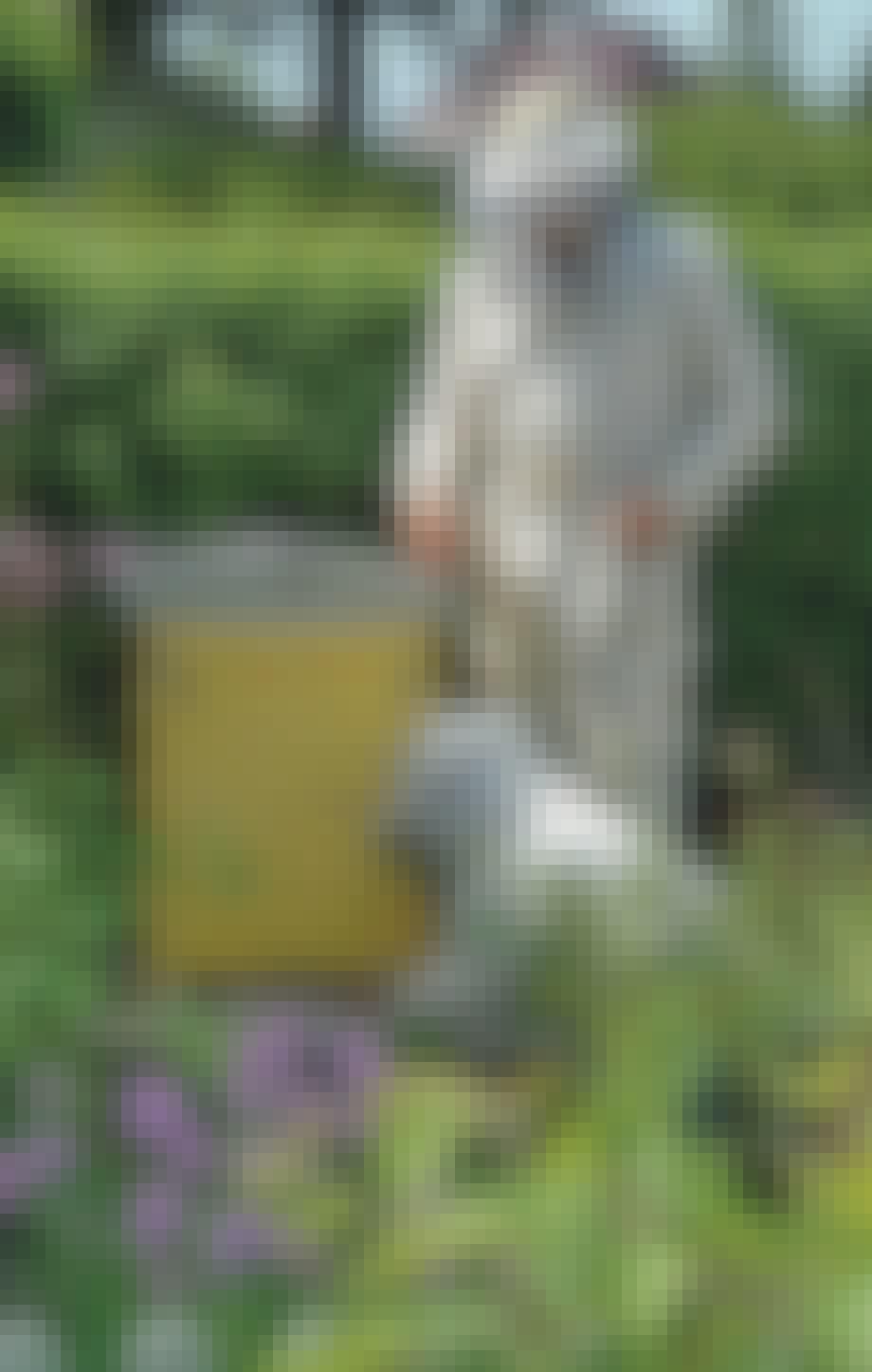 Bier i Baghaven - husk bidragt