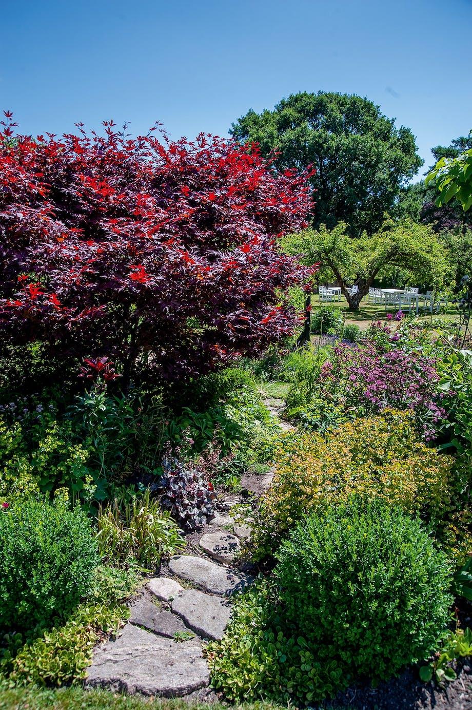 natursten sti frugttræer blomsterbed