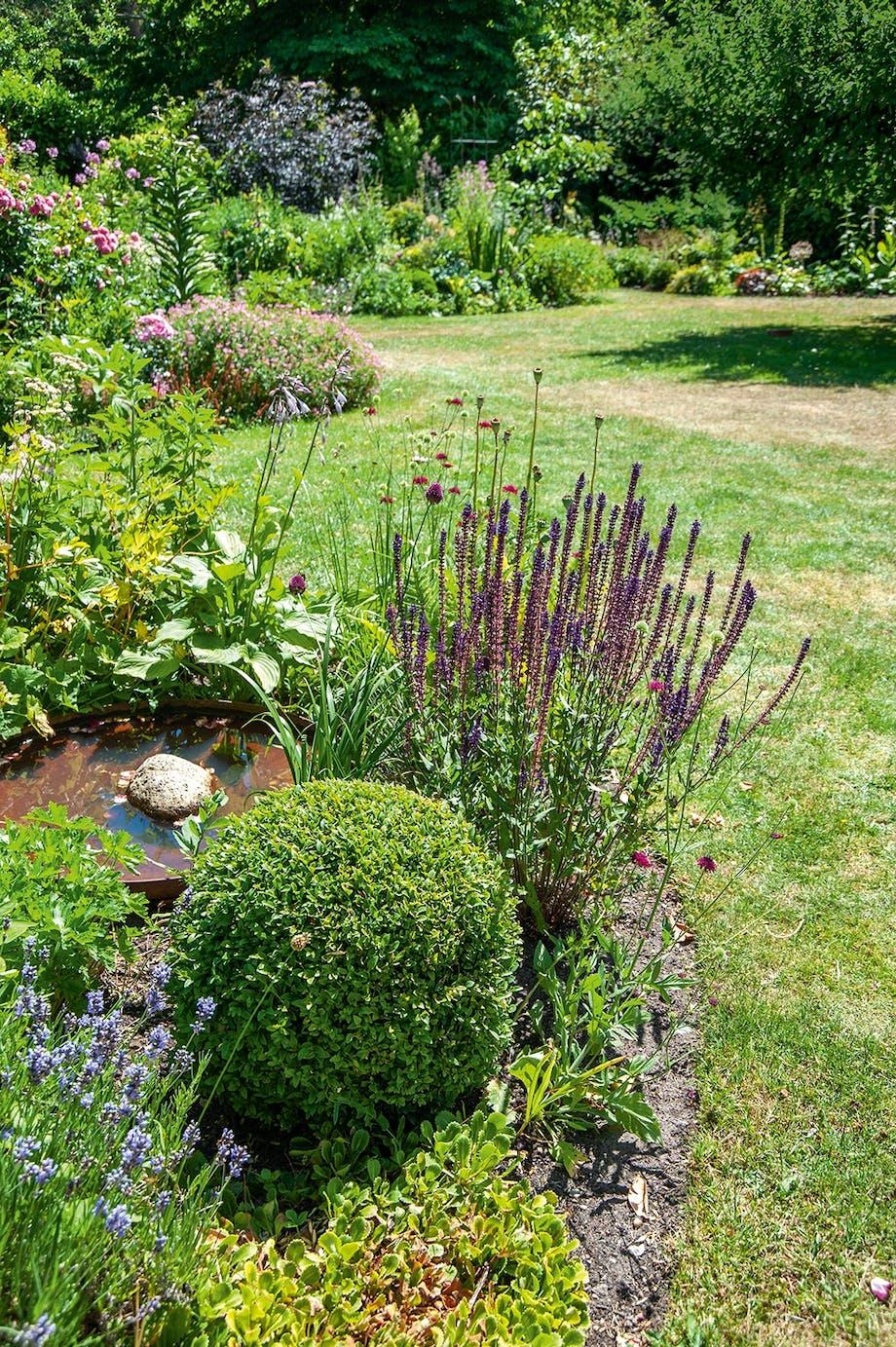 spejlbassin fugle buksbonhække lavendel have