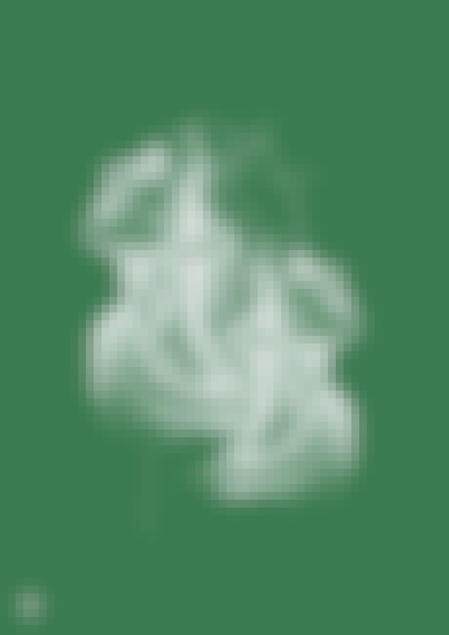 taisho plakat poster streger grøn tegning