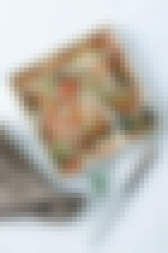 Tomattærte med spinat, rosmarin og gedeost