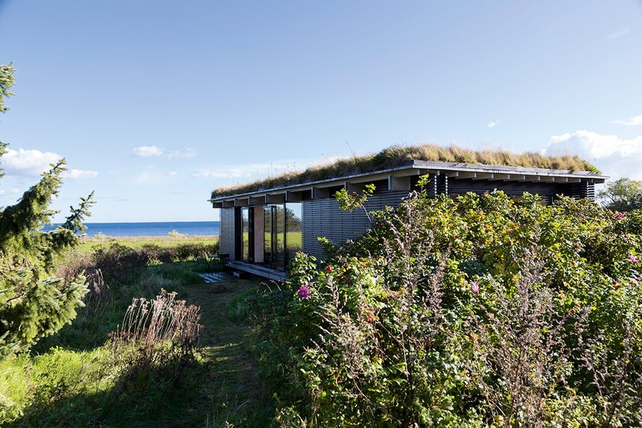 Sommerhus, natur og arkitektur. Udsigt til havet