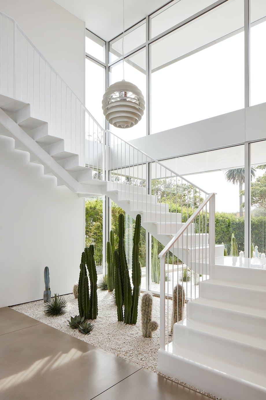 Dansk designlampe over have af kaktus