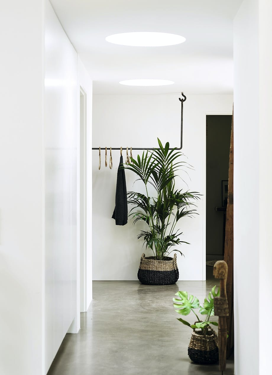 Entre med bøjlesystem og stor gulvplante