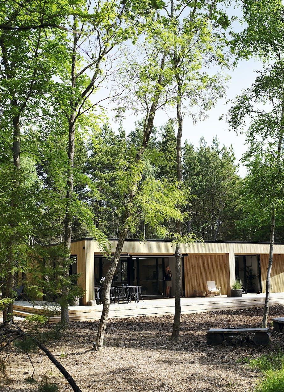 Træhuset i skoven