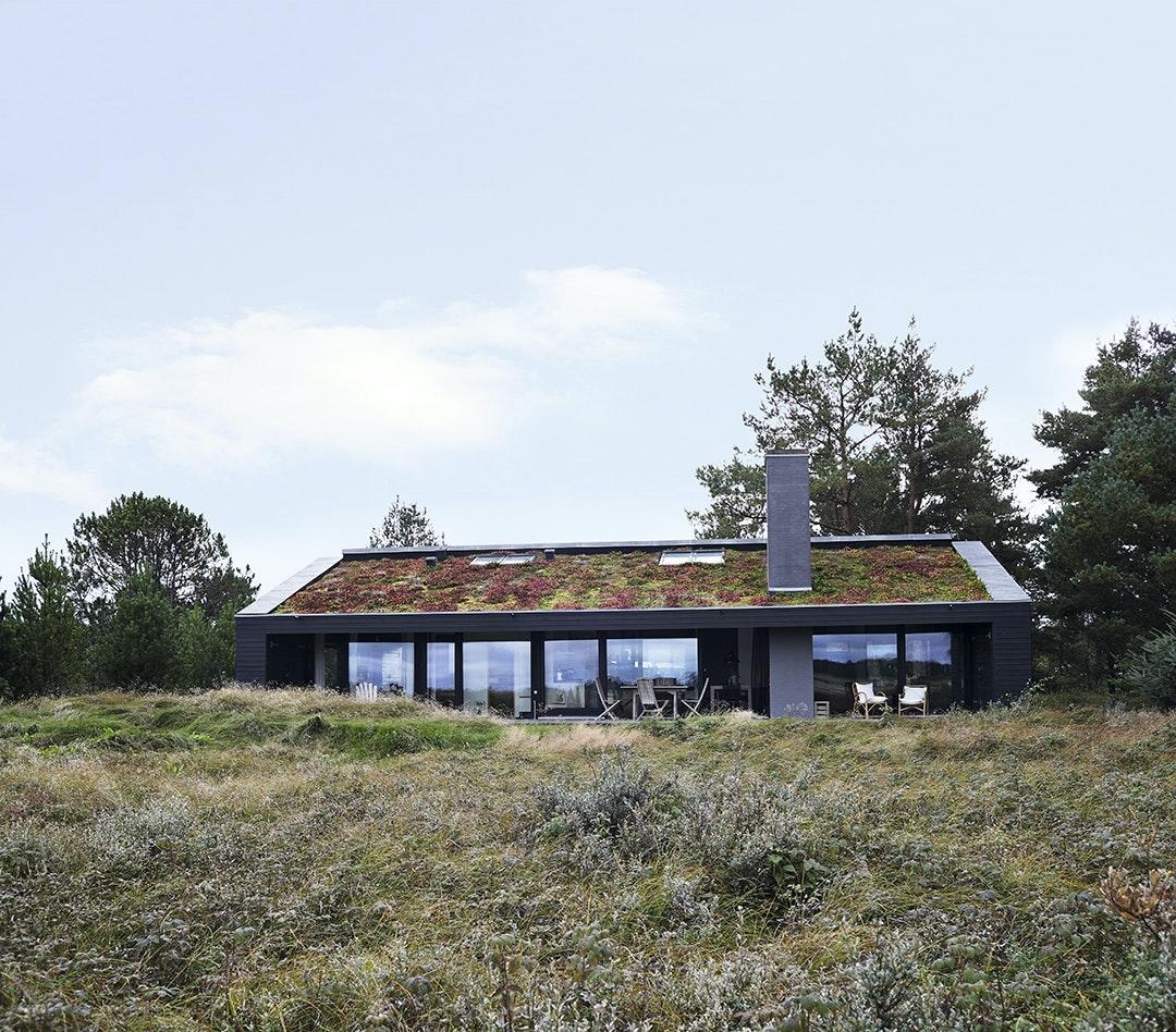 Hus integreret i landskabet