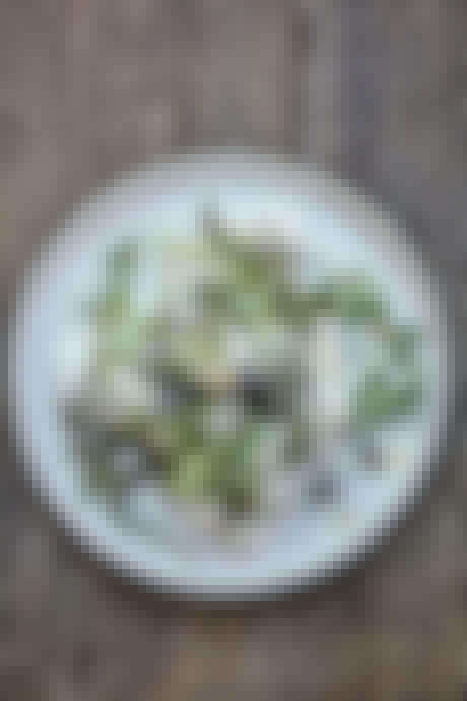 Burrata med sommertrøffel