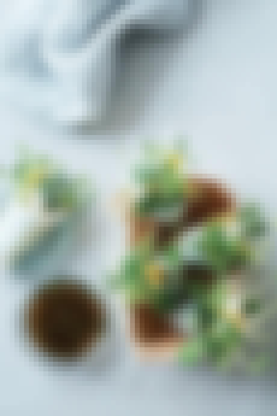 Rispapirwraps med kylling og urter
