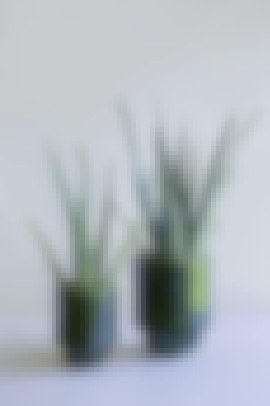 Potteplanter fra Bergs Potter i flot grøn farve.