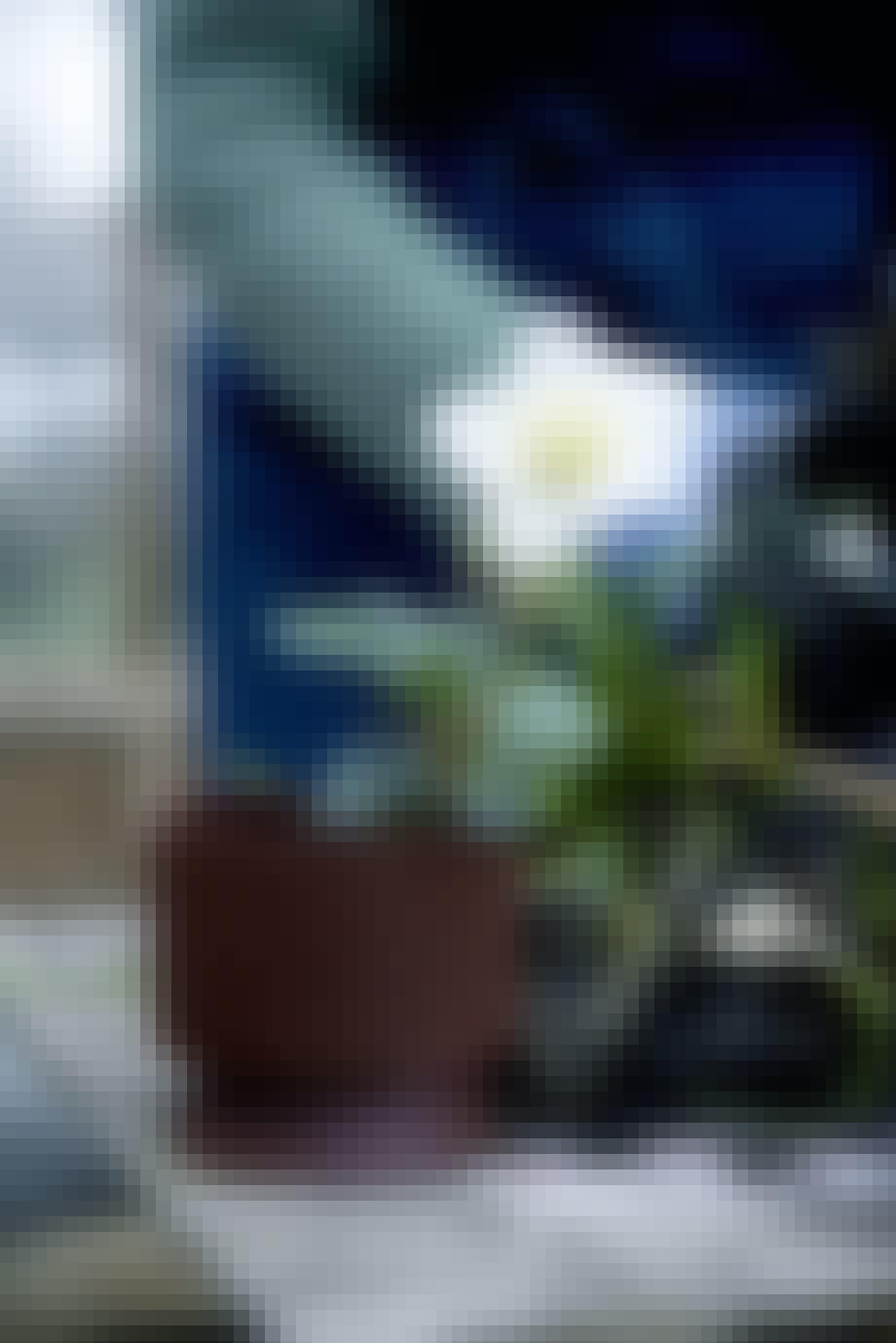 Reduce Flowerpot Signe Wenneberg for Rosendahl