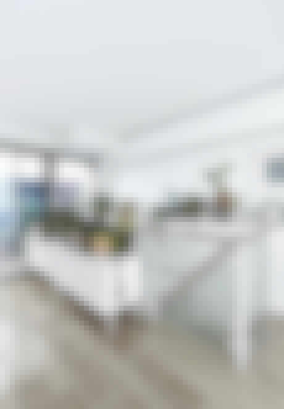 Minimalistisk hjem indrettet med planter