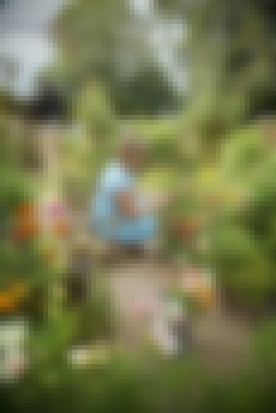 Jane i sin skærehave