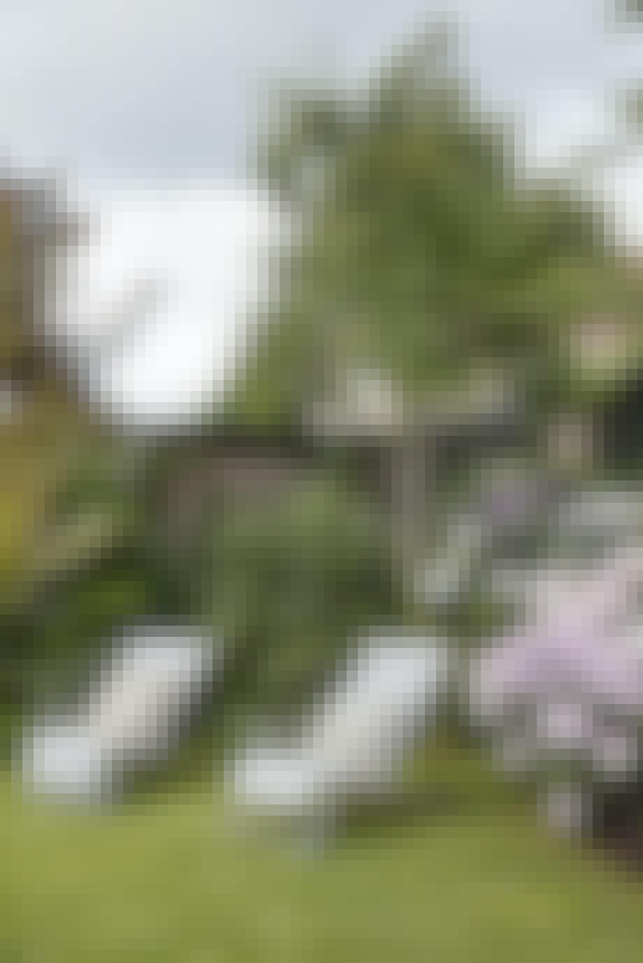 Den flotte og grønne have i Hellerup