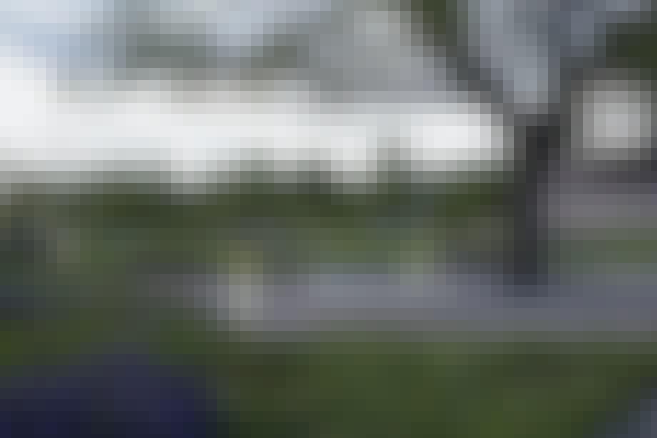 Have med strunke, hvide sølvlys