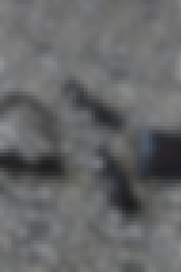 COS_2012__MGL9340