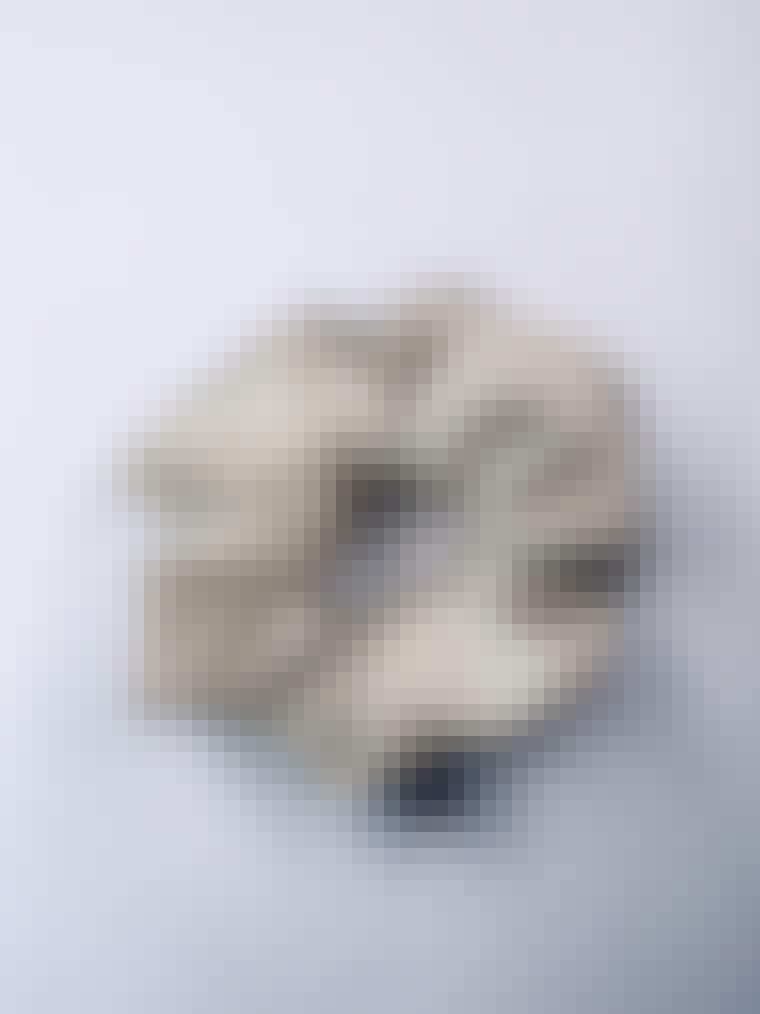 COS_2101_image_9bb899f6-42ed-4aa7-ae23-b8907bd1c609_800x