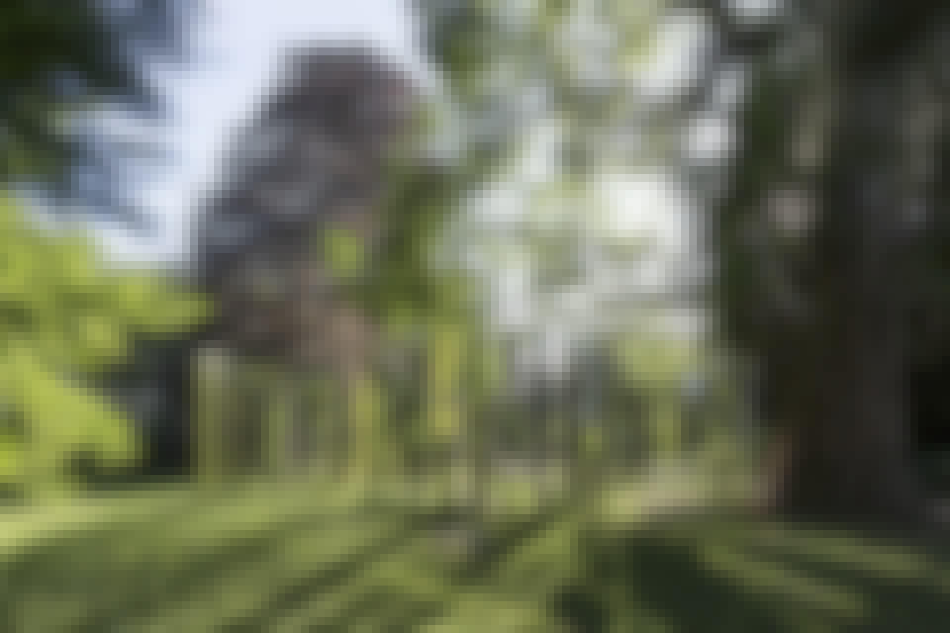 COM_2101_Anders-Sune-Berg-Gande_30B9990