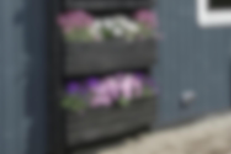 Lådorna kan lätt flyttas upp och ner utifrån hur mycket plats växterna i dem behöver.