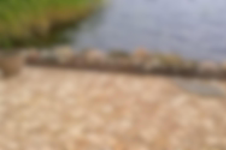 Slik lager du en terrasse av trefliser