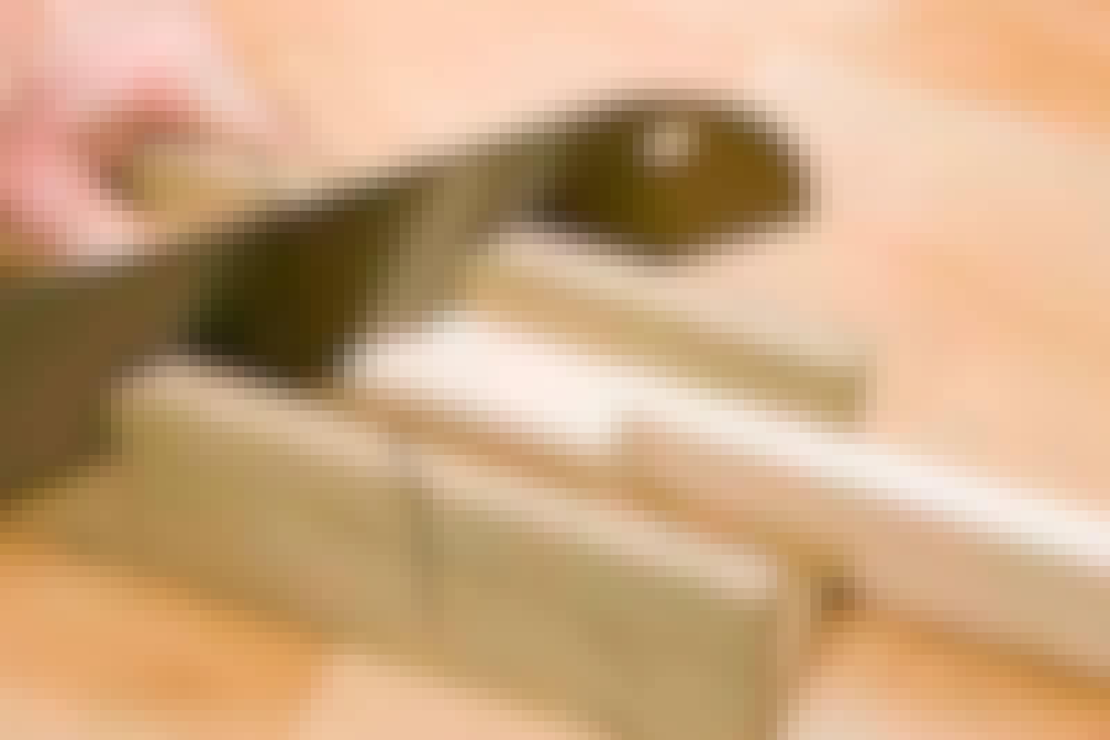 Fodpaneler: Usynlig længdesamling