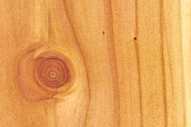 Frisk frugt Terrassebrædder - hvilket træ er bedst? | Gør Det Selv JX75