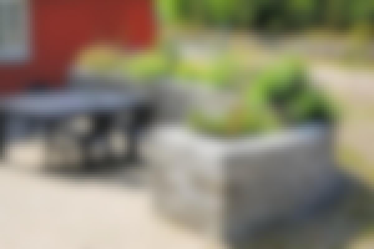 Højbedet bygget op af betonblokke giver læ for vinden, og de tunge blokke samler solens varme op i løbet af dagen og afgiver den så langsomt i løbet af aftenen og holder temperaturen oppe på terrassen.  **BYGGEVEJLEDNING: [Højbed giver læ på terrassen](https://goerdetselv.dk/haven/hoejbede/byg-med-store-betonsten-hoejbed-giver-lae-paa-terrassen)**