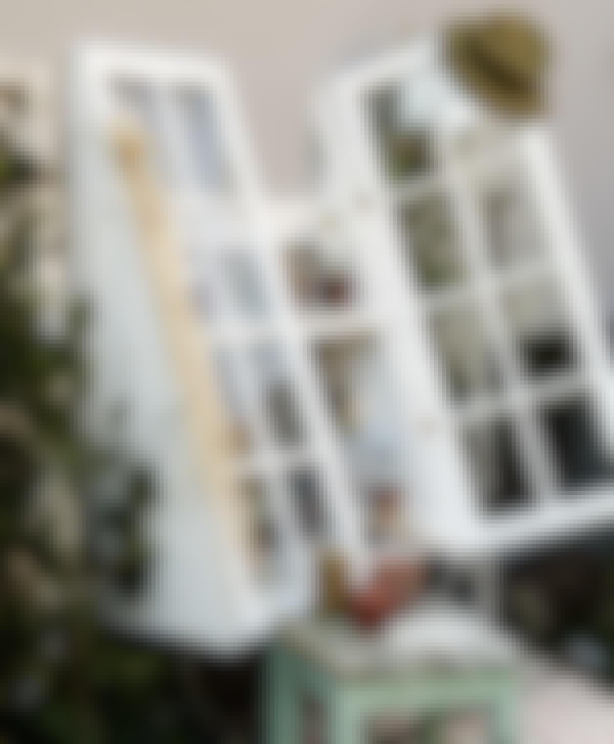FÖNSTER: Du kan bygga ett helt [orangeri](/byggnader/orangeri-bygg-sjalv-ett-orangeri-fraan-grunden) av återvunna fönster, men du kan också börja med ett litet vägghängt växthus.