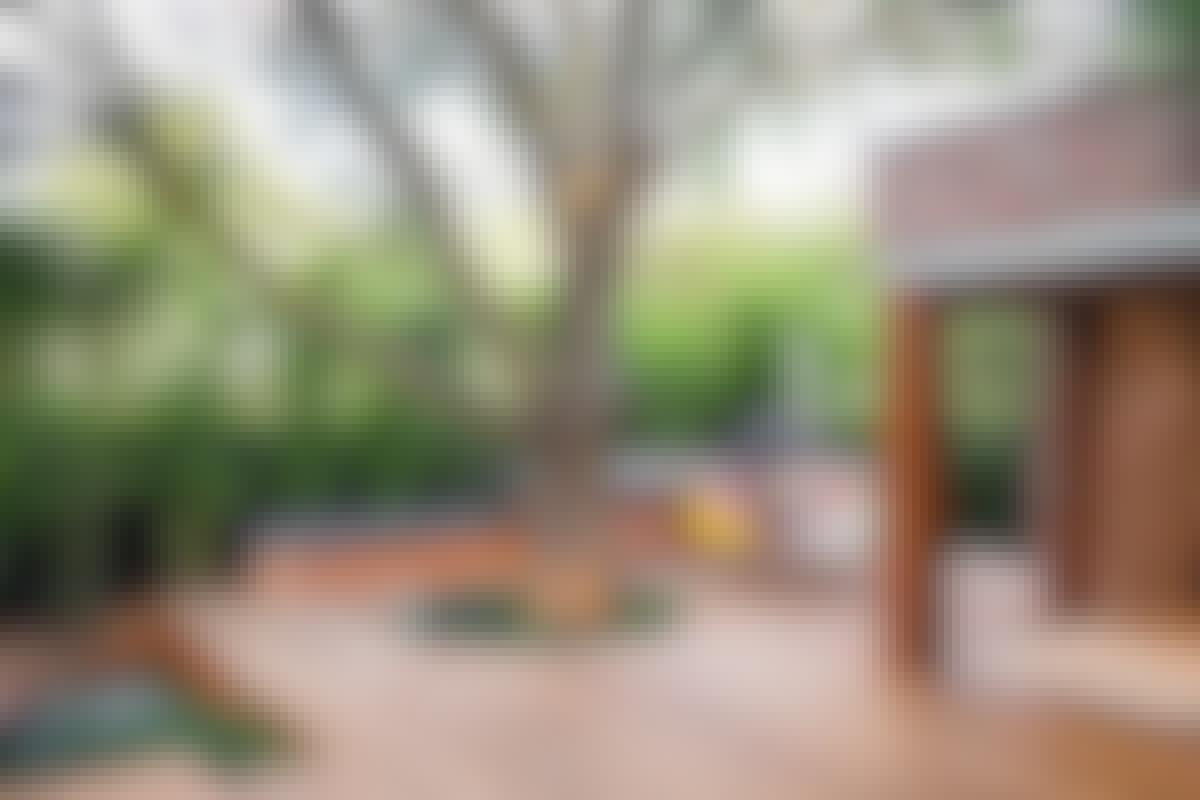 **8. BRYT MÖNSTRET** genom att t.ex. låta ett träd växa upp igenom terrassen. Det förstärker sambandet mellan terrassen och naturen.