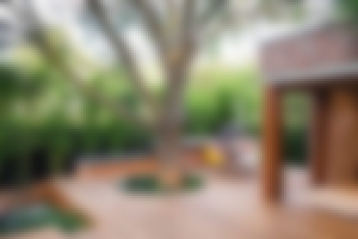 **8. ET STYKKE NATUR** , der bryder op gennem den regelrette flade – et træ, en klippe eller et vandløb – forstærker samspillet mellem haven og huset.