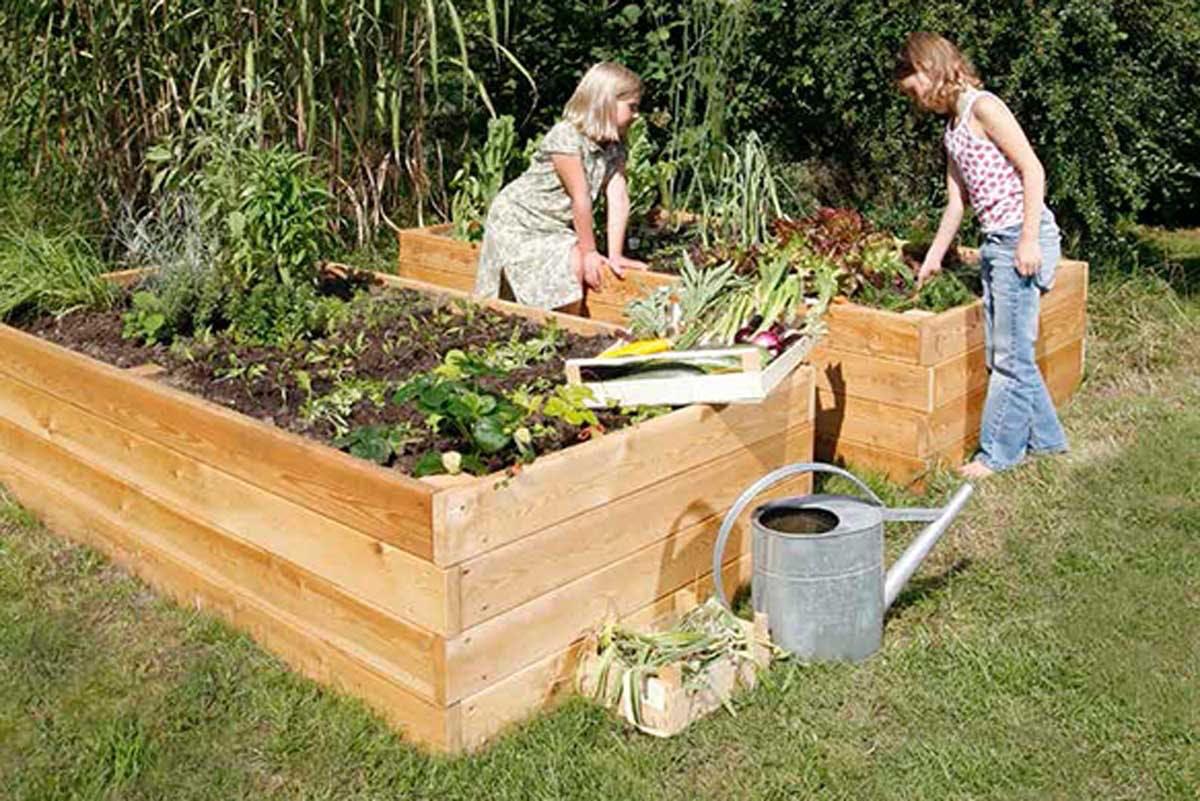 odla i trädgård - spara pengar