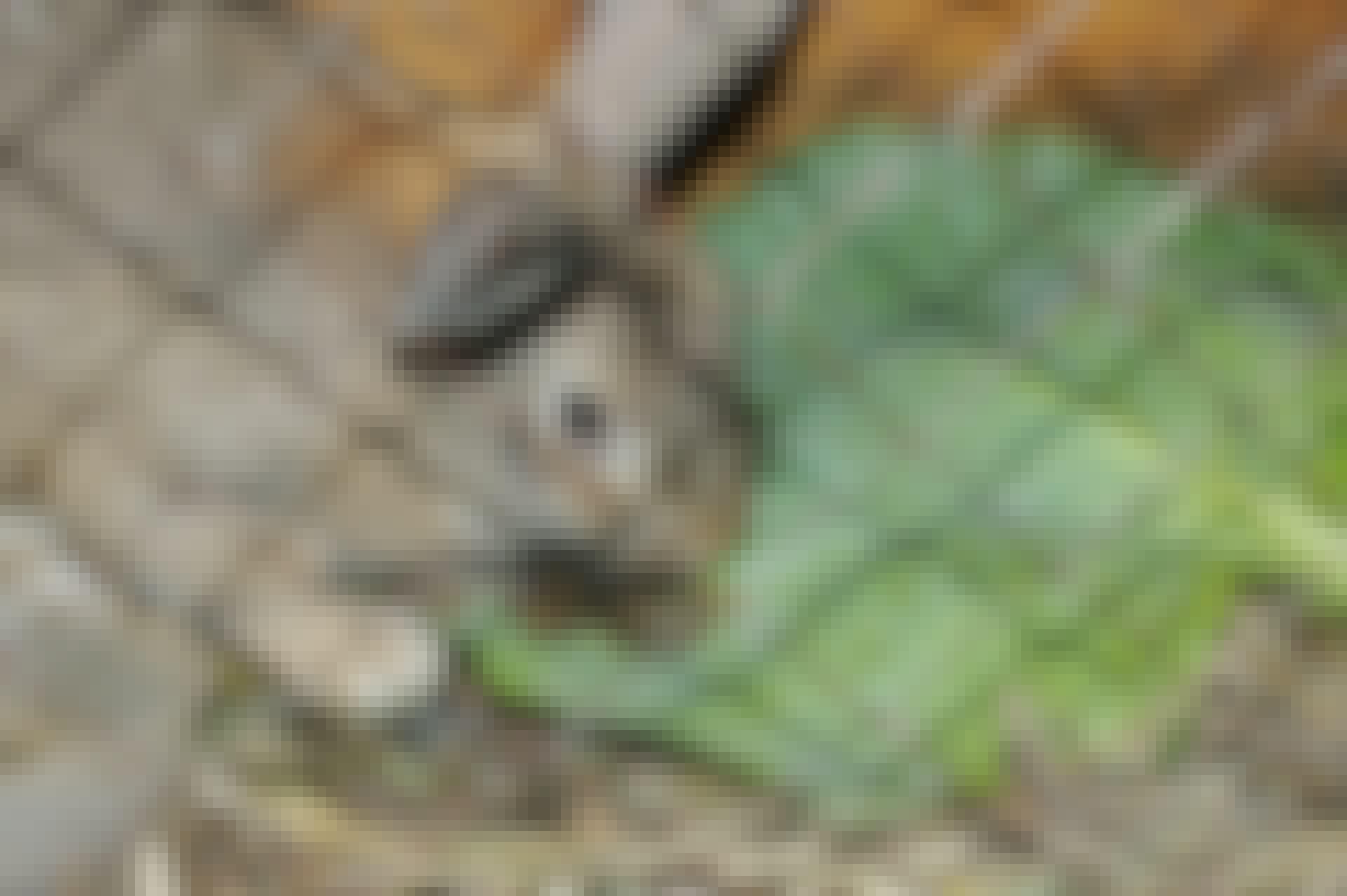 Rakenna helppo kaninhäkki