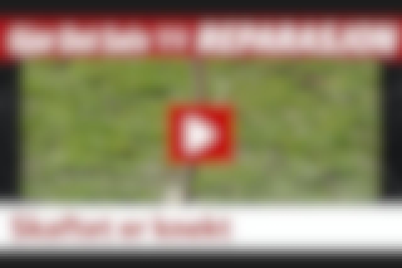 VIDEO: Gi spaden et nytt skaft
