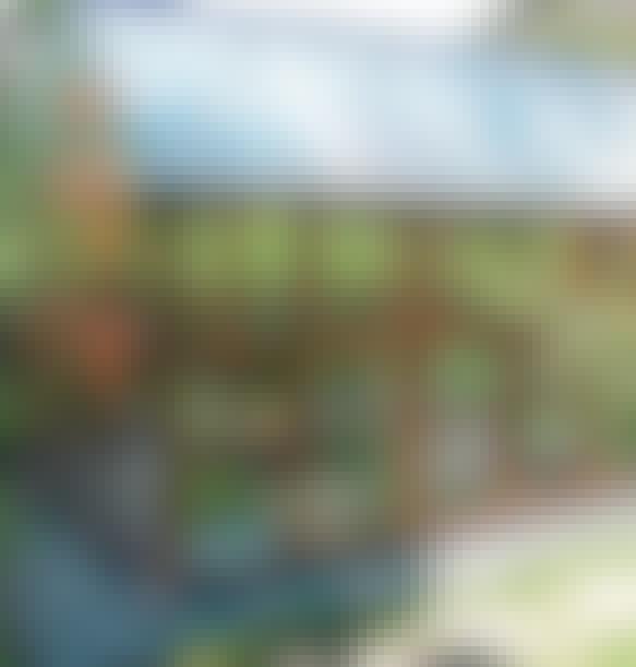 Rakenna kasvihuone sohvapöydistä