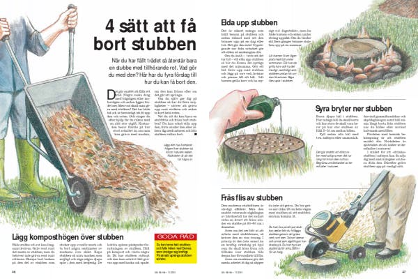 Berömda 4 sätt att få bort stubben | Gör Det Själv VC-52