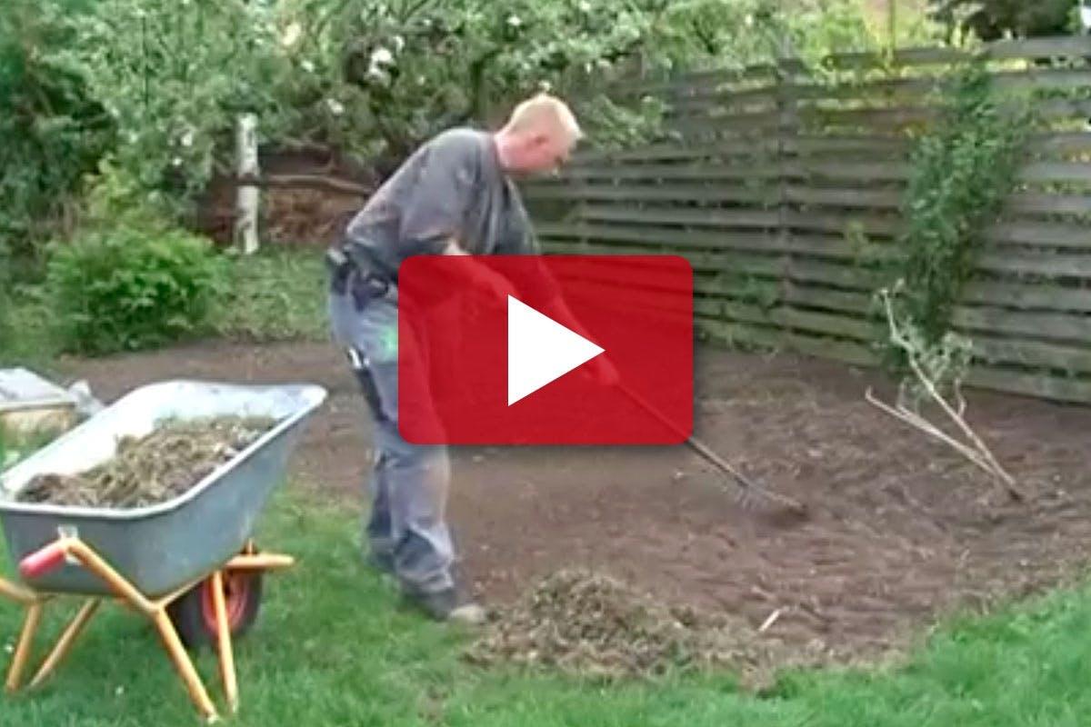 INRED TRÄDGÅRDEN: Snabb gräsmatta   Gör Det Själv