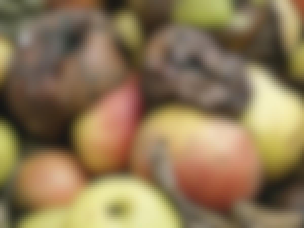 Nedfallsfrukt