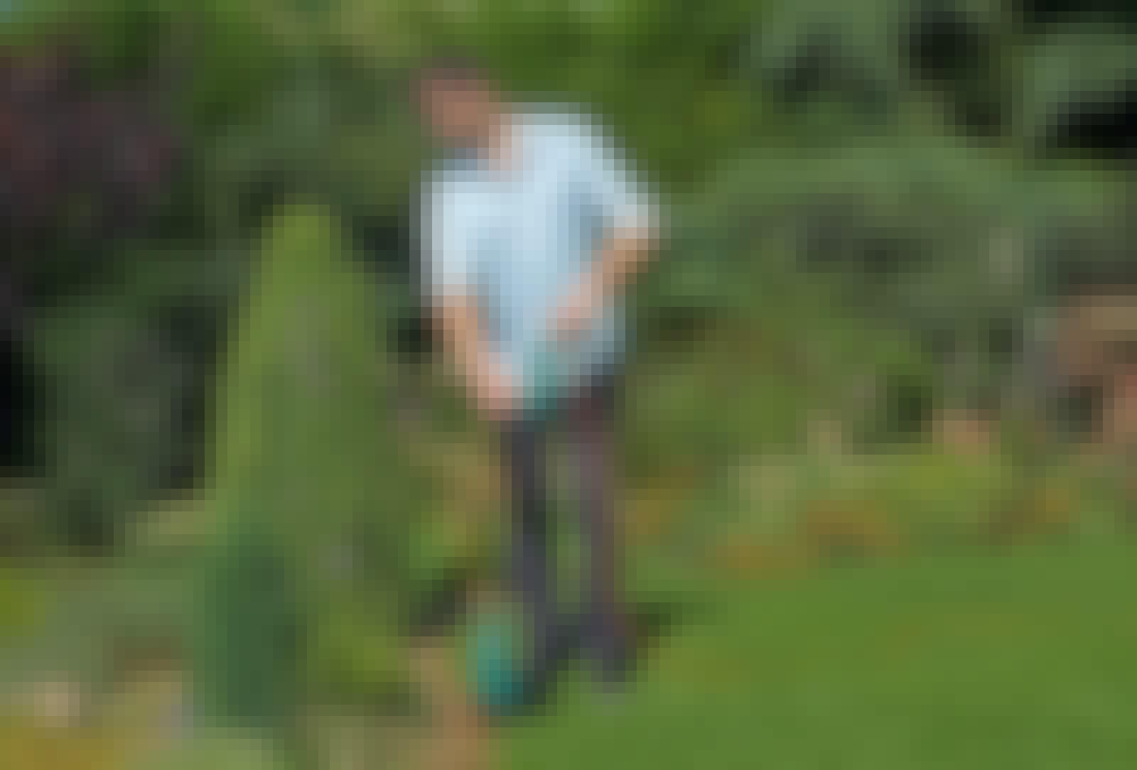 Grästrimmer trimmar kanter runt buskar.