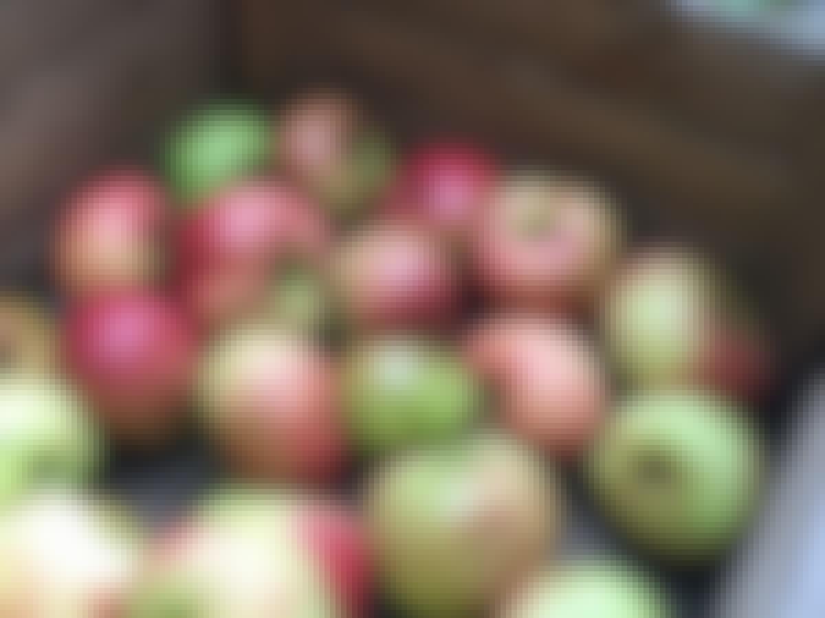 Æbler opbevaring