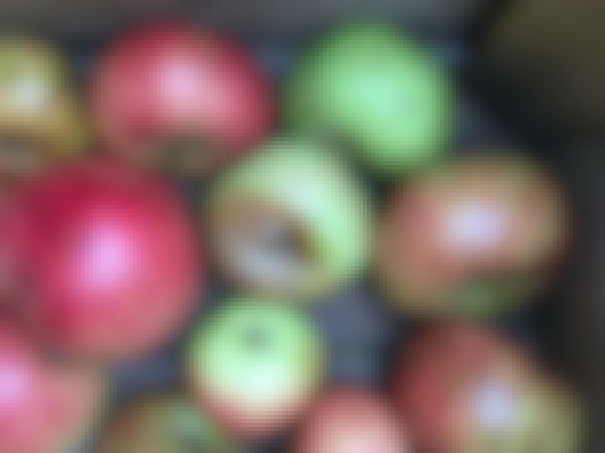 Äpplen förvaring