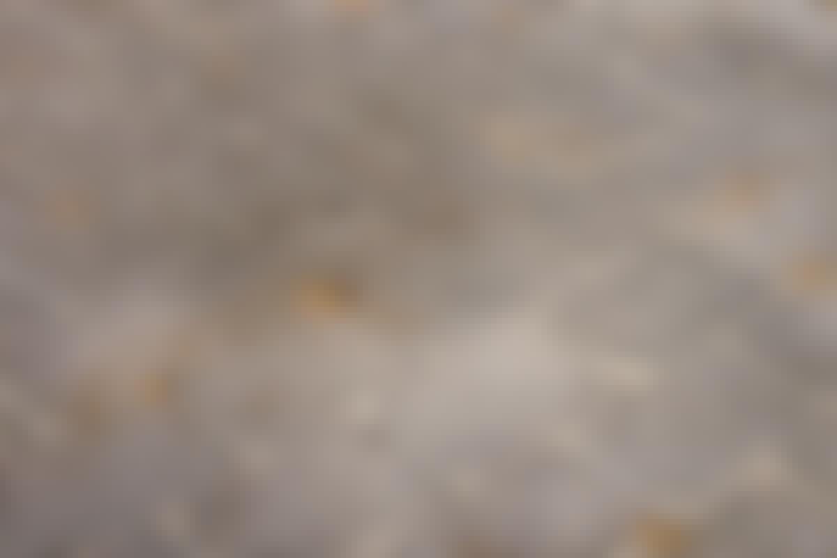De små haugene med sand i fugene, er tydelige tegn på at maurene har begynt gravearbeidet på undersiden.