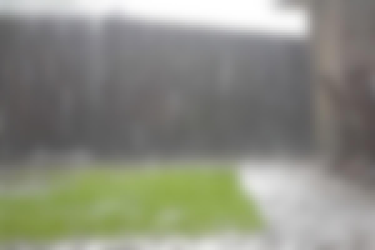 TESTI: Pystyykö sadevesisäiliö ottamaan vastaan sadeveden