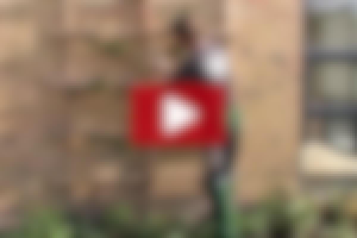 VIDEO: Bygg en fin spaljé
