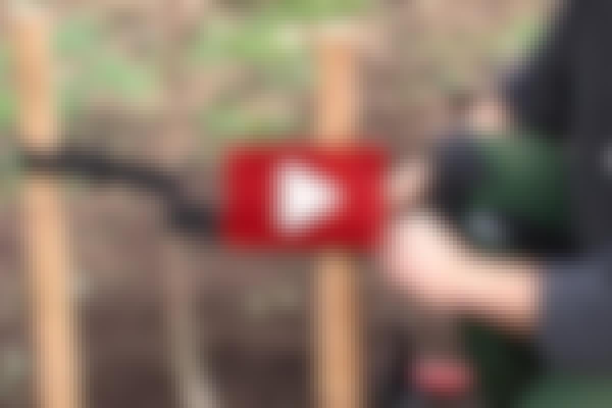 VIDEO: Bind opp treet riktig