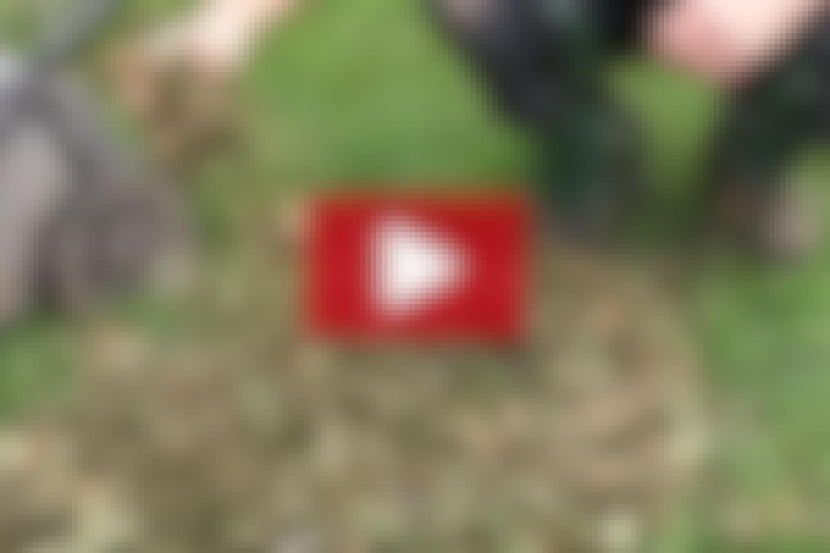 VIDEO: Sådan findeler du afklippet