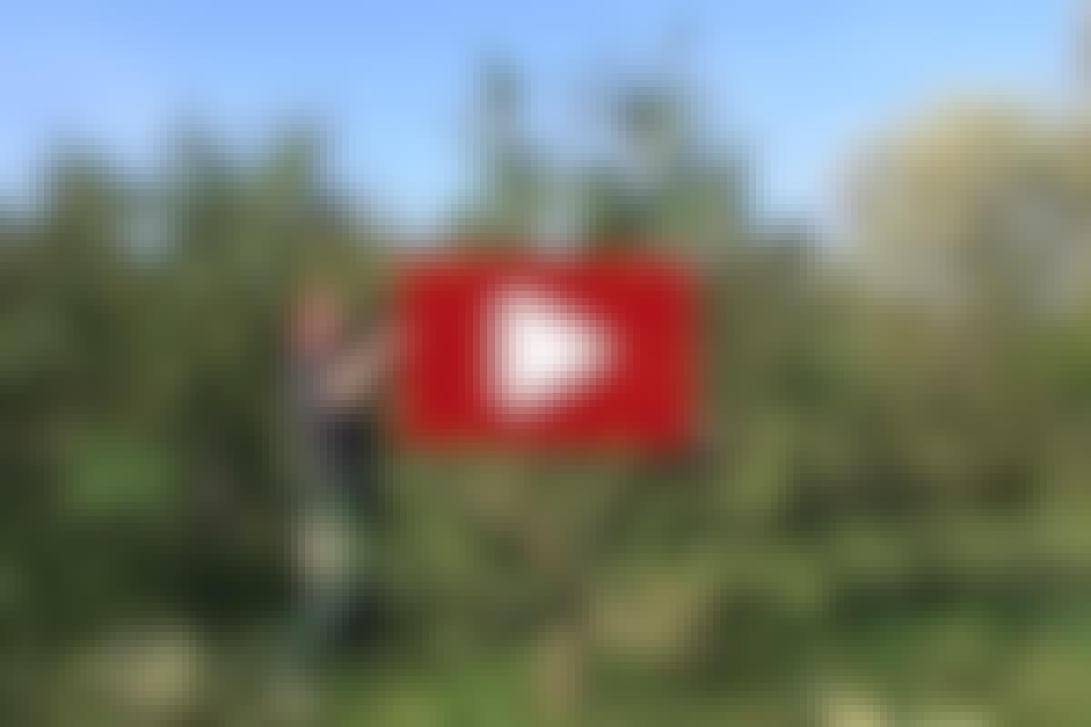 VIDEO: Näin pelastat omenapuun