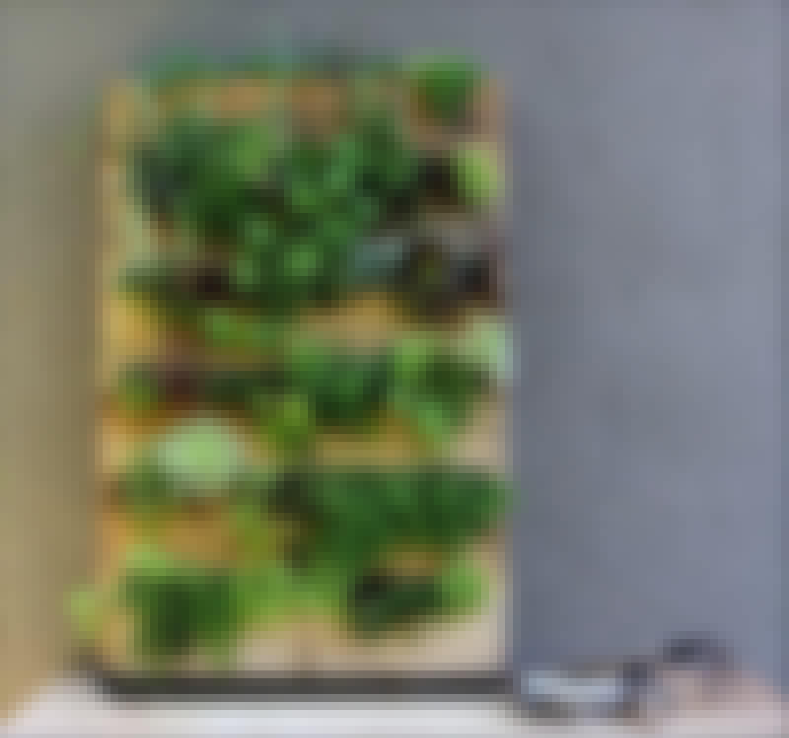 Paller plantekasser bed planter have
