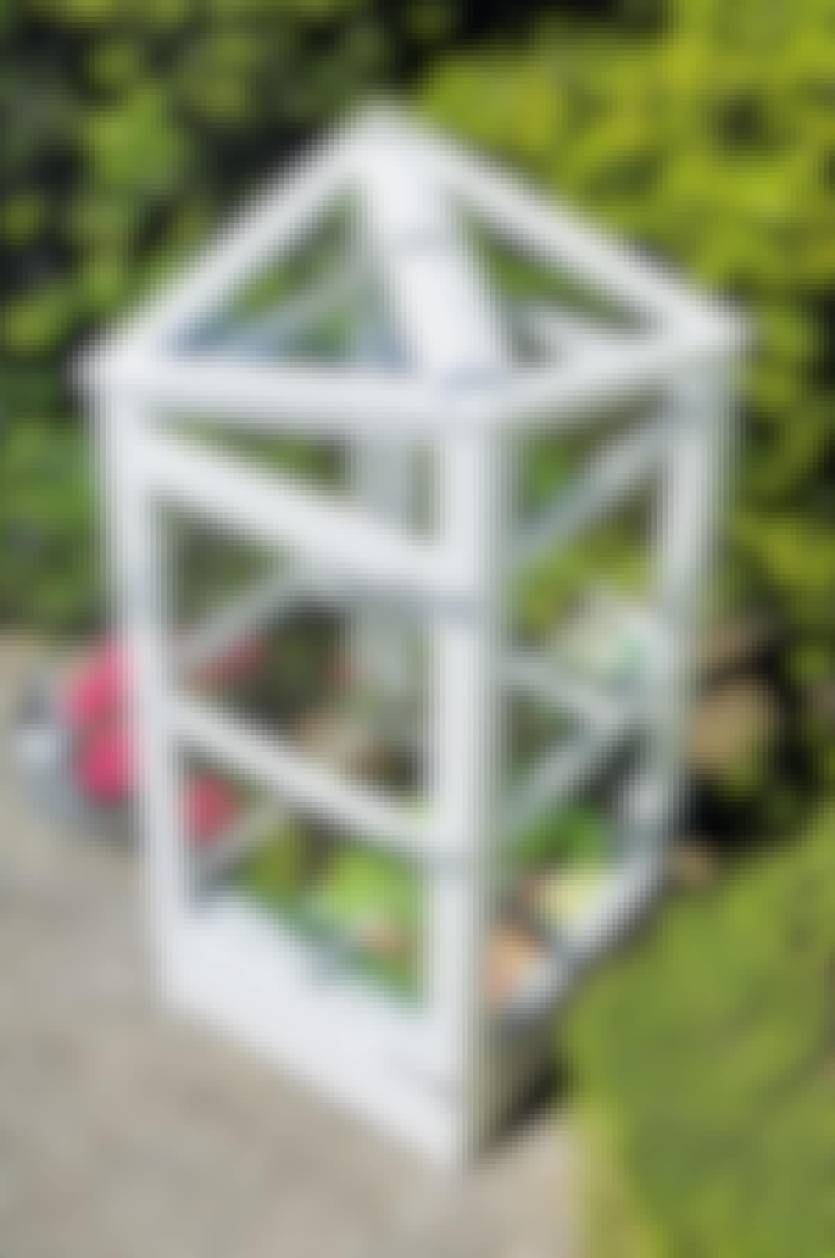 Drivhus 1 kvadratmeter