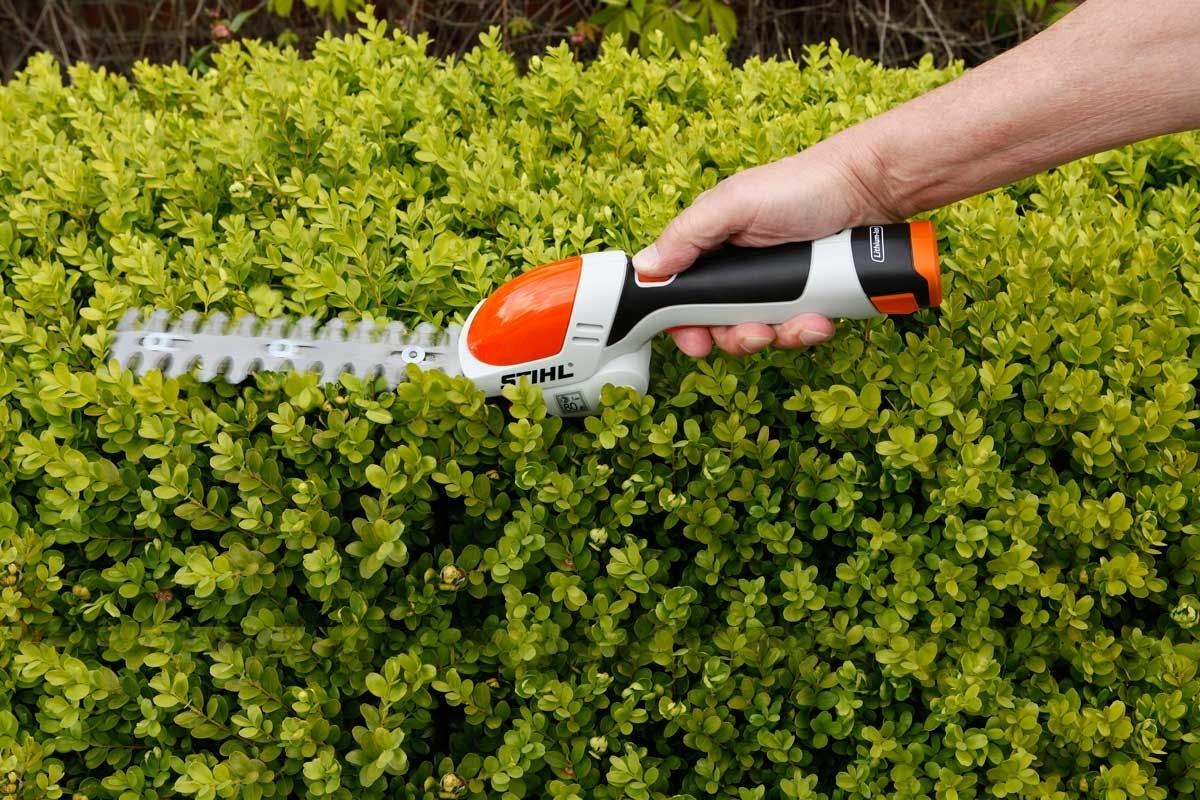 busk og gresstrimmer test av stihl hsa 25 busk og gresstrimmer gj r det selv. Black Bedroom Furniture Sets. Home Design Ideas