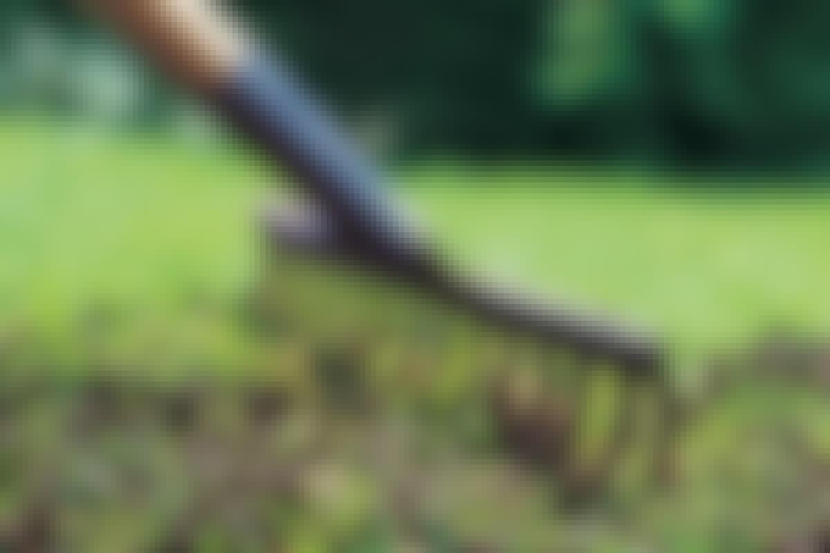 """Med """"topdressing"""" kan du udfylde fordybninger og samtidig give de nye græsfrø en optimal start i plænen."""